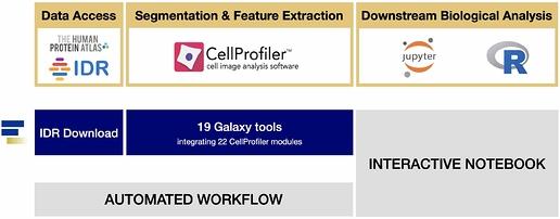 2020-07-01-wf_cell_profiler